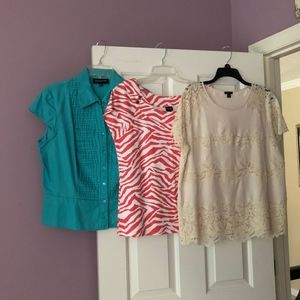 Short Sleeve Top Box (Large)
